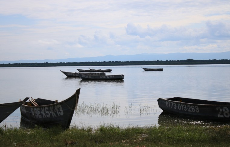 A tranquil river scene, wooden fishing boats float on the Kazinga Channel, Uganda.
