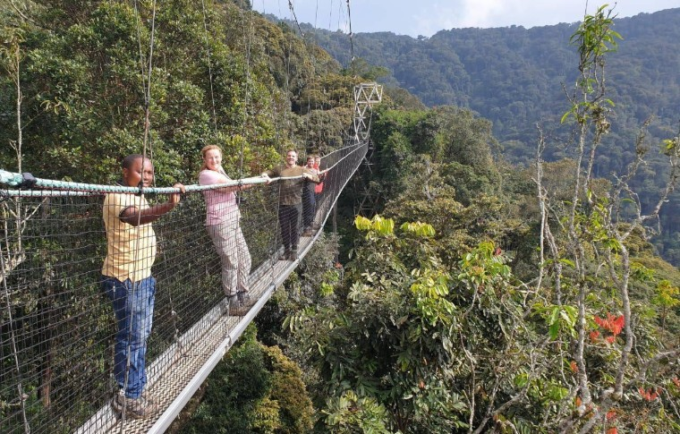 Guests walk along a canopy bridge on their Volcanoes National Park tour.