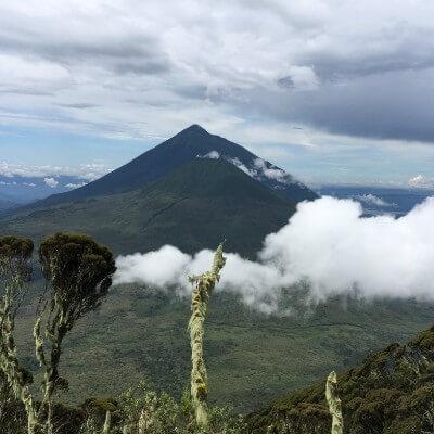 Virunga volcano in Volcanoes National Park.